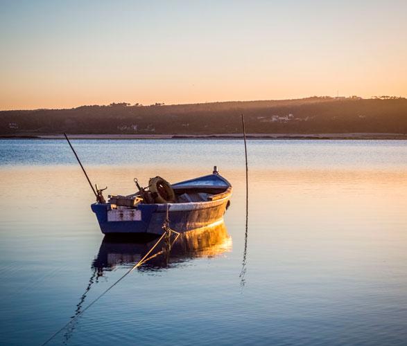 Licencias de pesca _ Asesoría Rezón